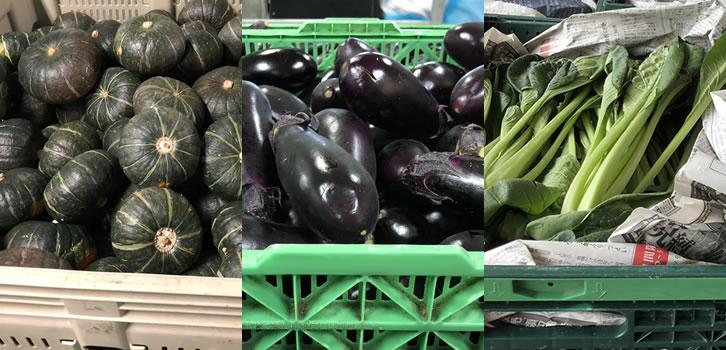 加工・業務用向け野菜